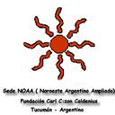 Fundación Carl C:zon Caldenius